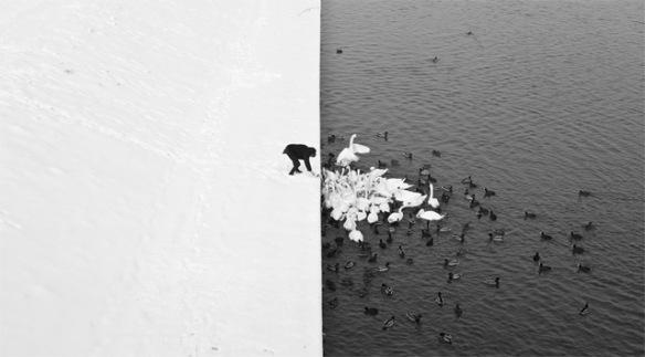 Image by Marcin Ryczek