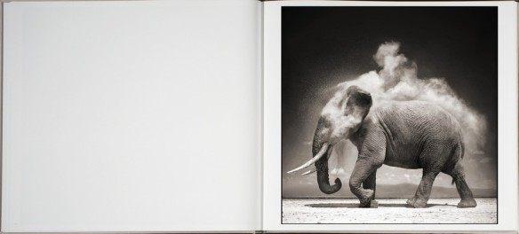 Nick Brandt – On This Earth, A Shadow Falls (inside 3)