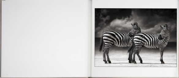 Nick Brandt – On This Earth, A Shadow Falls (inside 4)