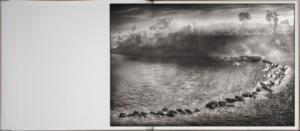 Nick Brandt – On This Earth, A Shadow Falls (inside 6)
