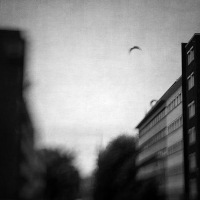 A Simple Morning by Vangelis Bagiatis