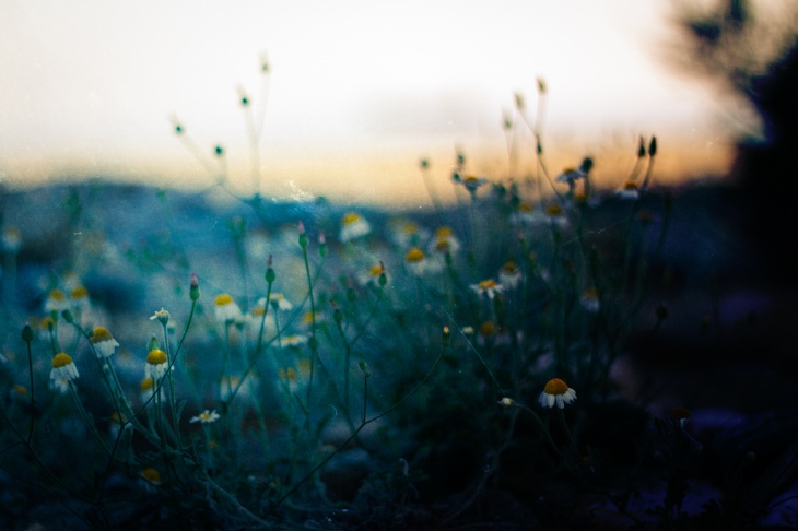 Rise And Fall by Vangelis Bagiatis